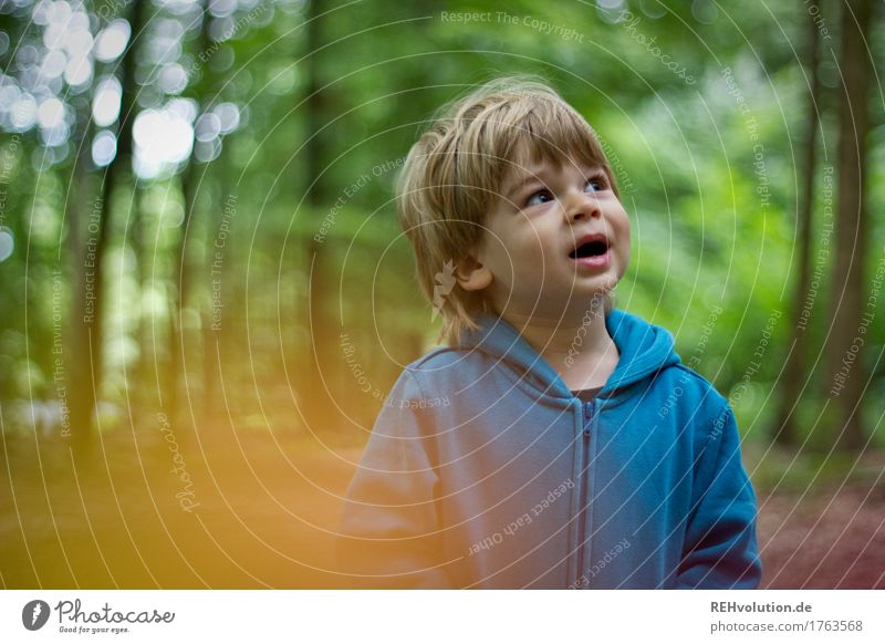 Human being Child Nature Blue Green Landscape Forest Face Environment To talk Boy (child) Small Masculine Leisure and hobbies Growth Infancy