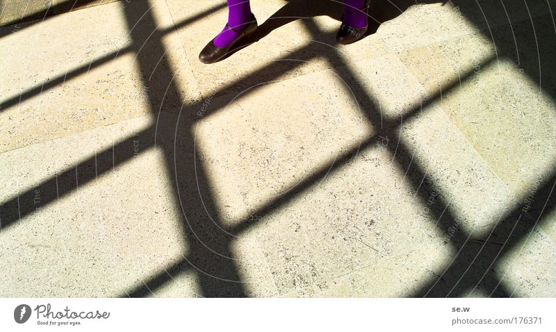 Human being Black Yellow Feminine Freedom Feet Footwear Line Moody Going Elegant Perspective Esthetic Violet Tights