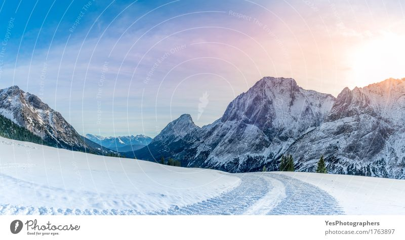 Alpine panorama with snowy road Vacation & Travel White Tree Joy Forest Mountain Cold Street Snow Happy Rock Bright Weather Europe Peak Frost