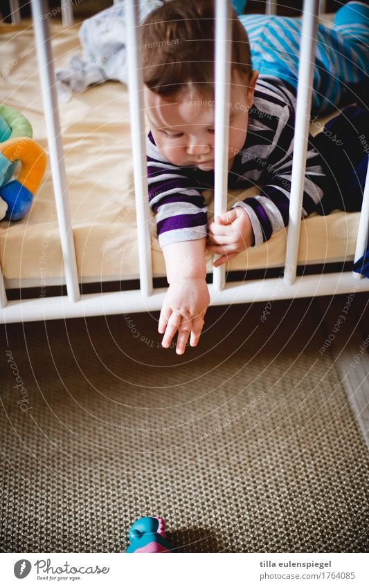 Child Human being Hand Far-off places Playing Leisure and hobbies Lie Infancy Baby Passion Toddler Distress Grating Doomed 0 - 12 months Outstretched