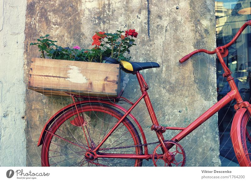 Flowers in a wooden box Design Vacation & Travel House (Residential Structure) Baltic Sea Small Town Building Architecture Transport Street Rust Old Near Retro