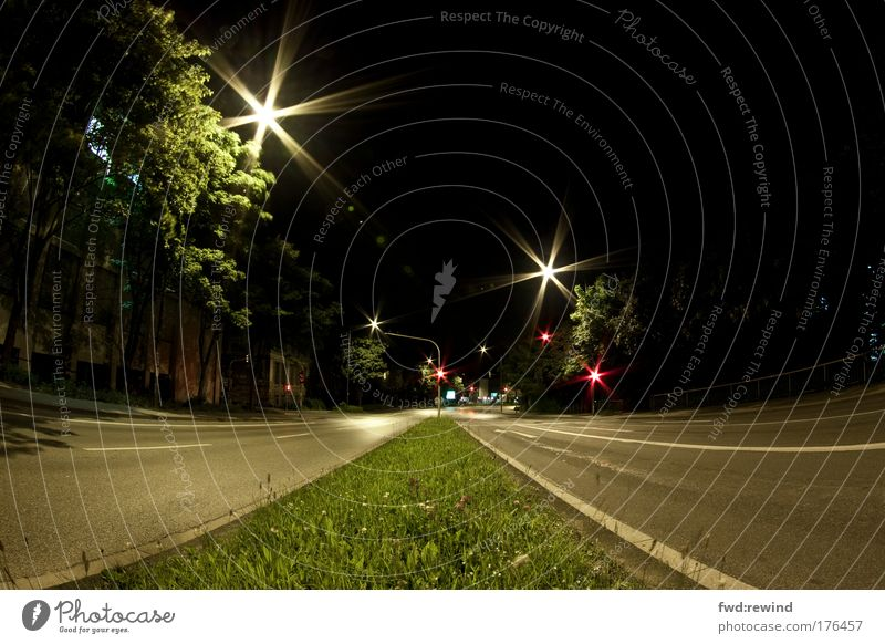 Far-off places Street Dark Grass Glittering Wait Star (Symbol) Illuminate Asphalt Traffic infrastructure Night Fisheye Street lighting Motoring Traffic light Road traffic