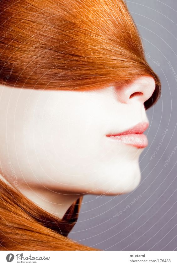 F O U L A R D Colour photo Studio shot Flash photo Portrait photograph Feminine Hair and hairstyles Face Headscarf Red-haired Bangs Esthetic Elegant Glittering