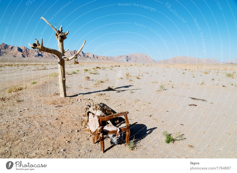 in the empty desert of persia lamp oil on branch Beautiful Vacation & Travel Tourism Mountain Chair Environment Nature Landscape Plant Sand Sky Clouds Tree Park