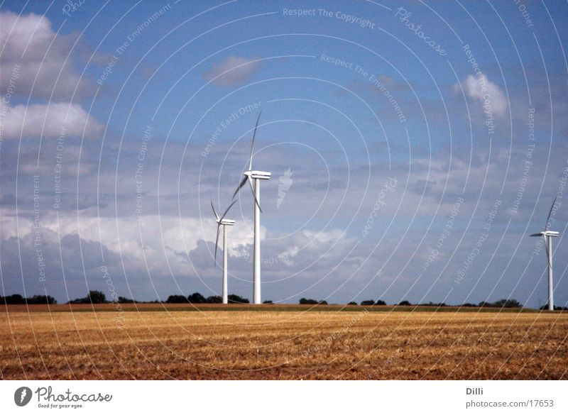 windmills Cornfield Plain Agriculture Wind energy plant