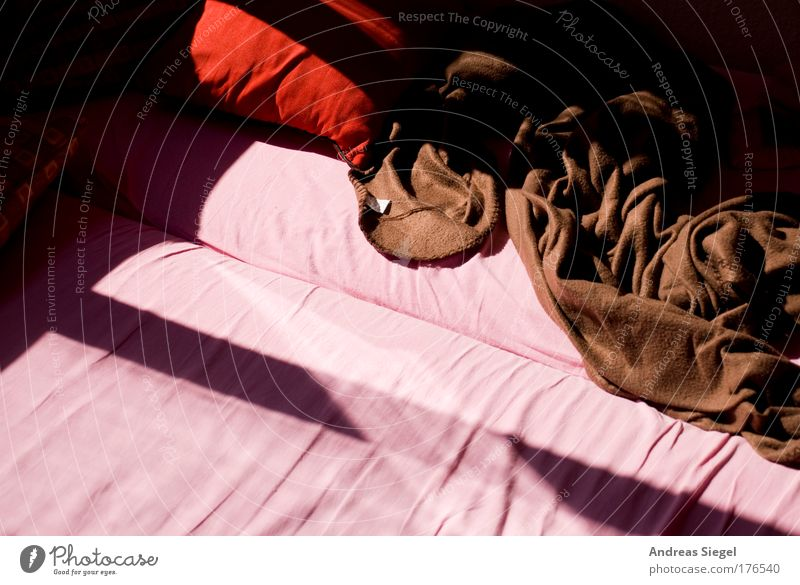 Red Calm Colour Life Relaxation Warmth Line Brown Flat (apartment) Pink Beginning Sleep Esthetic Bed Authentic Living or residing