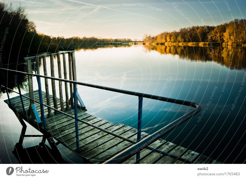 Old footbridge Trip Far-off places Freedom Environment Nature Landscape Cloudless sky Horizon Autumn Climate Beautiful weather Tree Forest Lake Olba