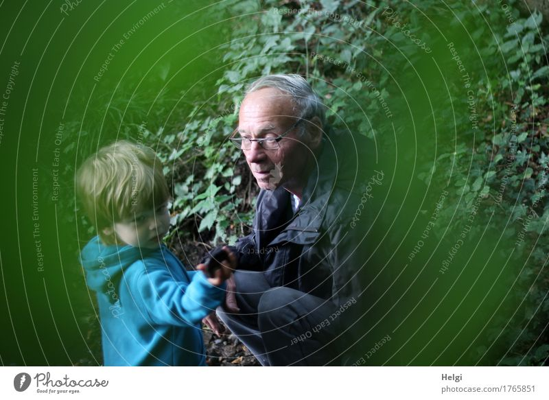 little boy and his grandpa on a discovery tour in the forest Human being Masculine Toddler Male senior Man Infancy Senior citizen 2 1 - 3 years
