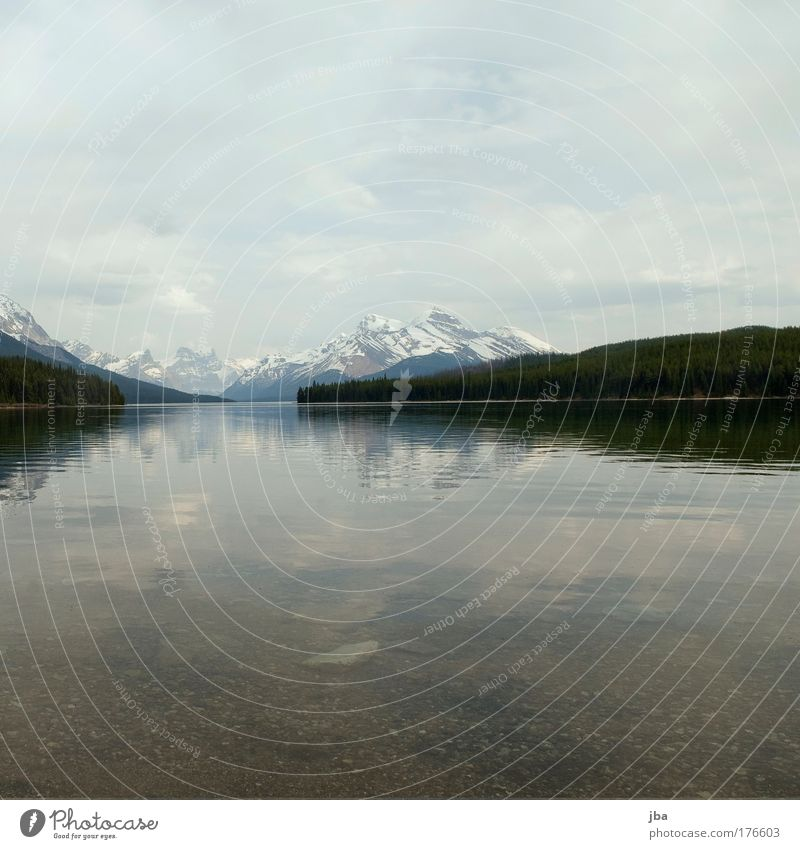 Maligne Lake Colour photo Exterior shot Deserted Copy Space top Copy Space bottom Day Vacation & Travel Tourism Summer Mountain Nature Landscape Water Clouds