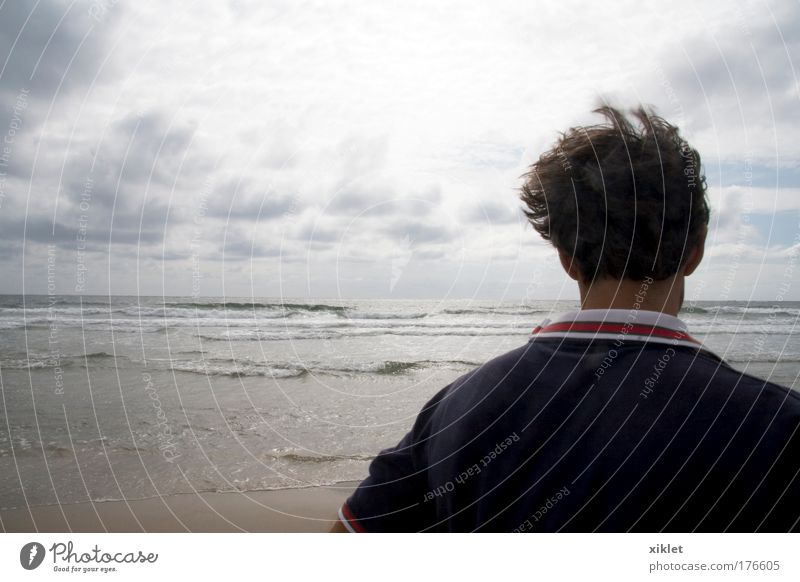 sand Colour photo Exterior shot Copy Space right Day Light Deep depth of field Central perspective Rear view Looking away Masculine Head 1 Human being Nature