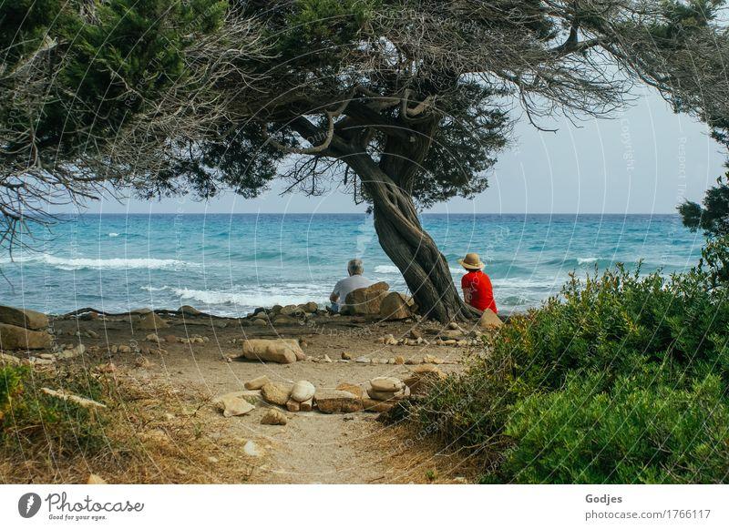 Human being Woman Sky Nature Man Summer Tree Ocean Relaxation Adults Senior citizen Grass Feminine Couple Sand Masculine