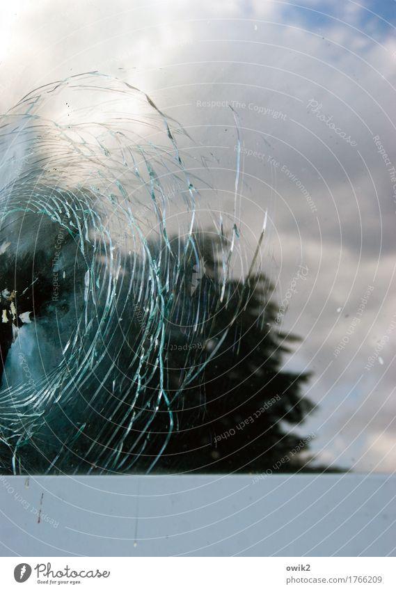 Sky Nature Tree Landscape Window Environment Wall (building) Wall (barrier) Wild Glass Concrete Beautiful weather Broken Anger Crack & Rip & Tear Window pane