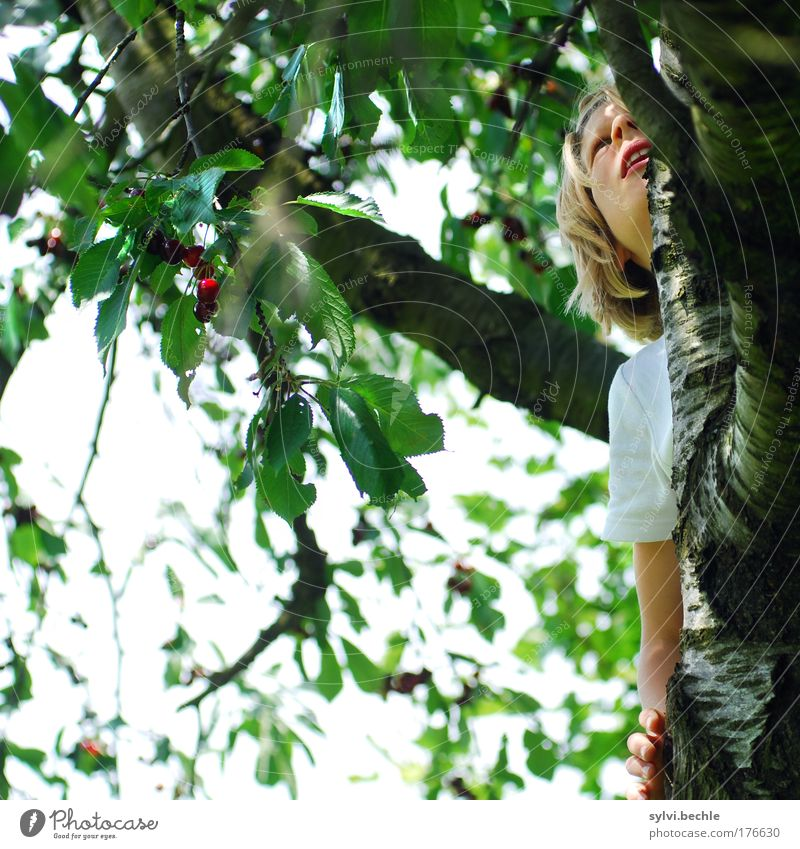 I'm good for cherries! Fruit Nutrition Organic produce Human being Girl Infancy Face Mouth Arm Hand Nature Plant Sky Tree Leaf Agricultural crop Garden Life