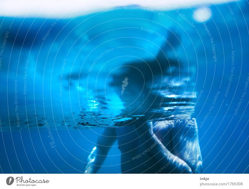 blue man Swimming & Bathing Summer Ocean Man Adults Life Body Upper body 1 Human being 30 - 45 years 45 - 60 years Water Dive Blue Colour photo Exterior shot