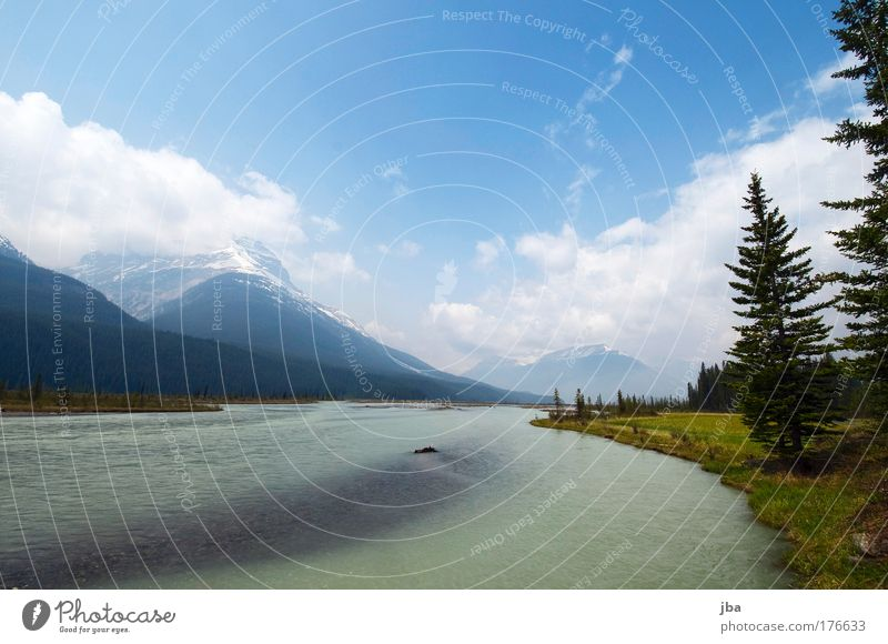 in Banff Colour photo Exterior shot Copy Space top Day Sunlight Vacation & Travel Tourism Trip Summer Nature Landscape Water Sky Spring Mountain Rocky Mountains