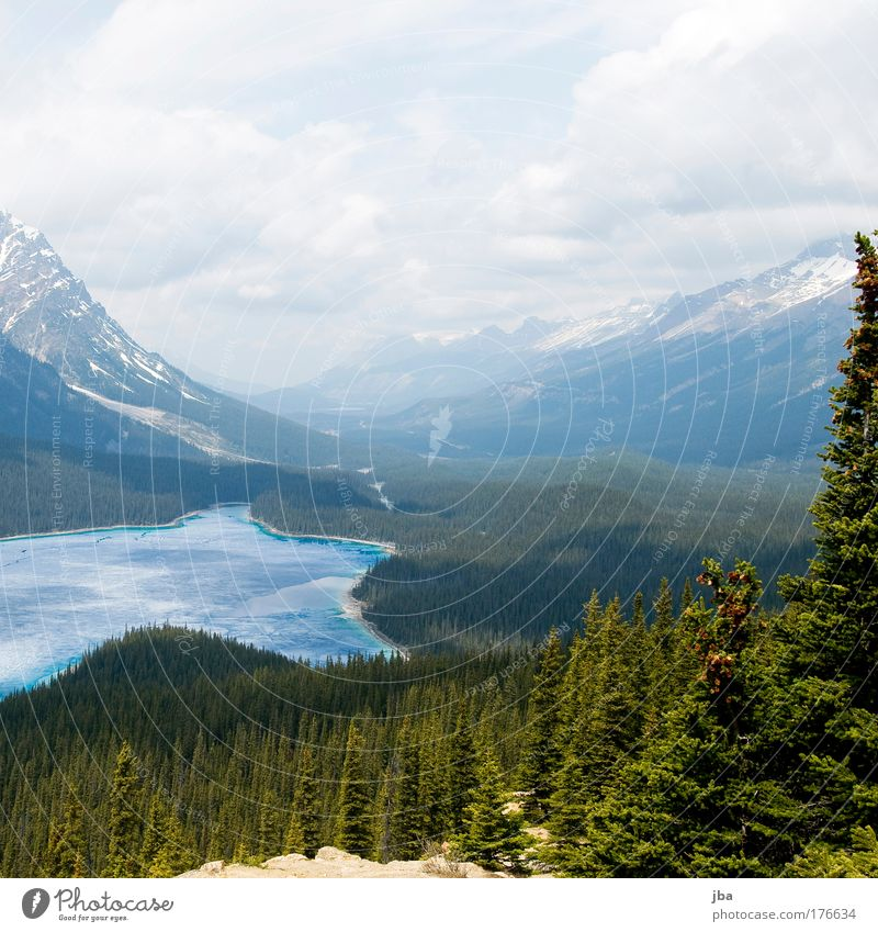 Peyto Lake Colour photo Exterior shot Copy Space top Day Sunlight Vacation & Travel Tourism Trip Summer Nature Landscape Sky Mountain Rocky Mountains Peyto lake