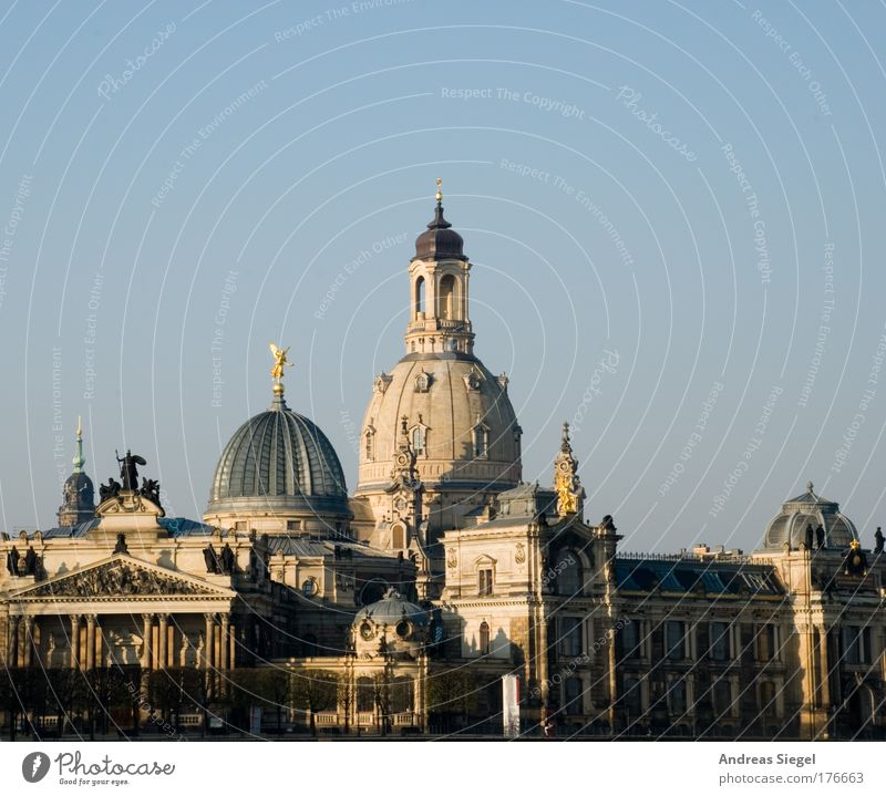 Good morning Dresden Colour photo Exterior shot Deserted Morning Shadow Sunlight Cloudless sky Beautiful weather Town Downtown Old town Manmade structures