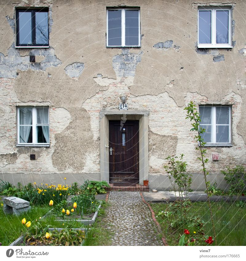 Nature Old Green Beautiful Plant Flower House (Residential Structure) Window Wall (building) Grass Happy Wall (barrier) Door Contentment Facade Esthetic