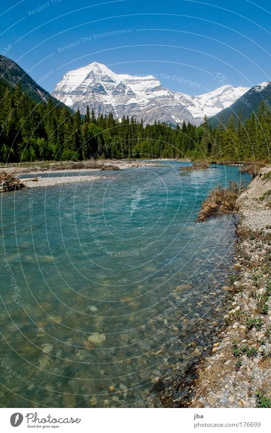 Mt. Robson. Colour photo Exterior shot Deserted Copy Space bottom Day Sunlight Wide angle Vacation & Travel Trip Far-off places Freedom Summer Nature Landscape