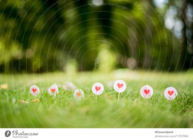 Love in the grass Nature Summer Grass Meadow Sign Signs and labeling Heart Border Colour photo Exterior shot Close-up Detail Deserted Day Deep depth of field