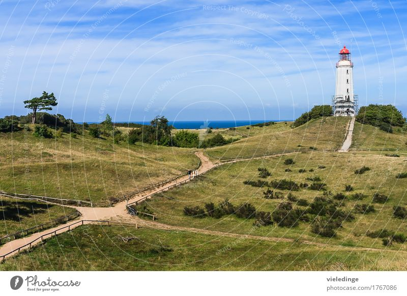 Lighthouse Dornbusch on Hiddensee Relaxation Vacation & Travel Tourism Far-off places Summer Summer vacation Ocean Island Hiking Nature Landscape Sky Tree Grass