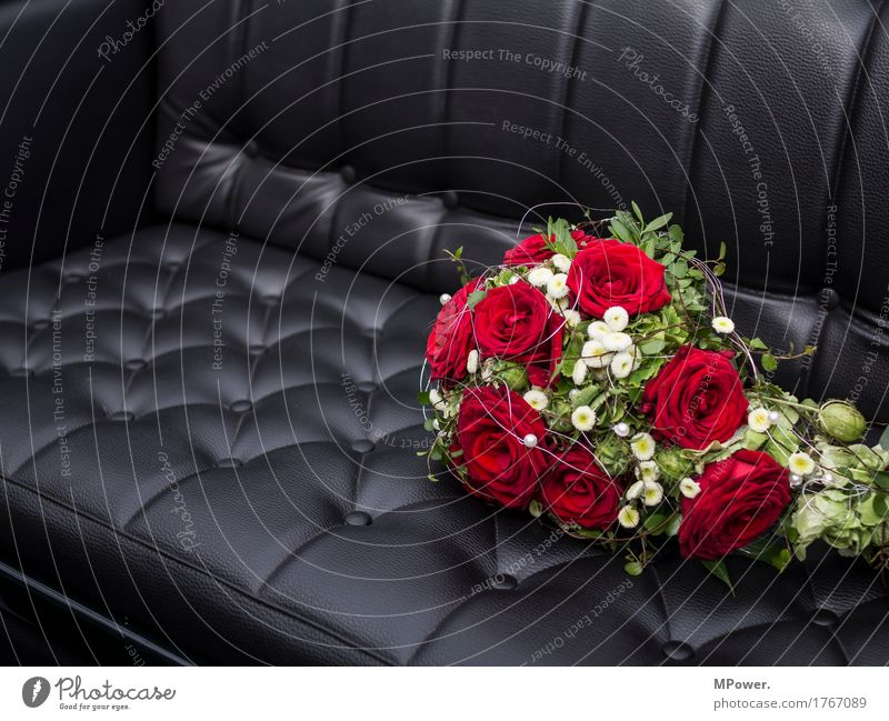 Red Black - a Royalty Free Stock Photo from Photocase