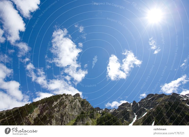Sun and sky Colour photo Exterior shot Copy Space left Copy Space top Day Light Shadow Sunlight Sunbeam Back-light Worm's-eye view Wide angle Nature Landscape