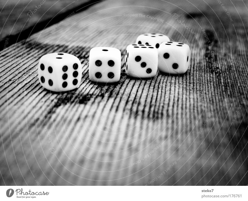 thrown together Black & white photo Macro (Extreme close-up) Contrast Shallow depth of field Cube Table Wood Playing Game of chance Disaster Throw dice