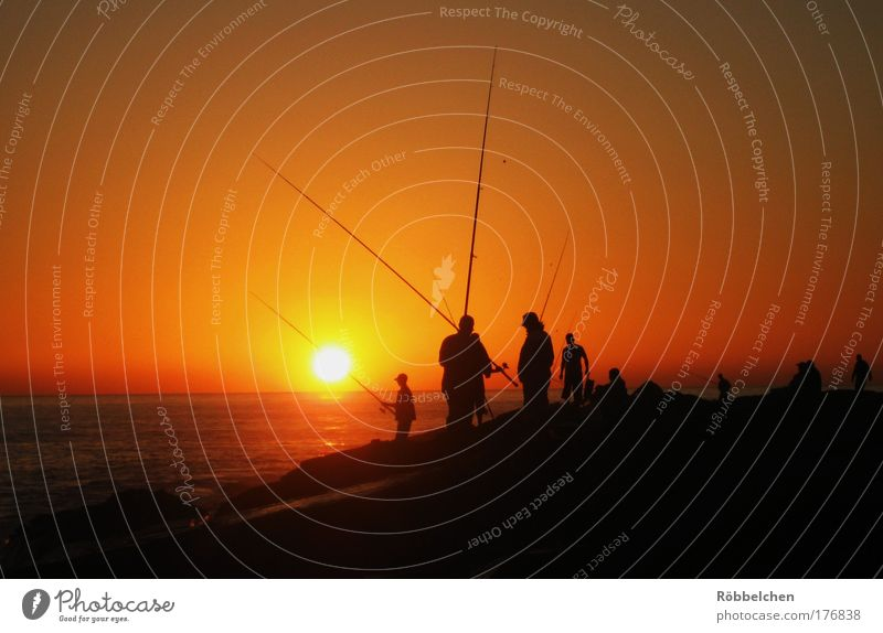 Human being Ocean Red Black Group Brown Wait Fishing (Angle) Attachment Morocco