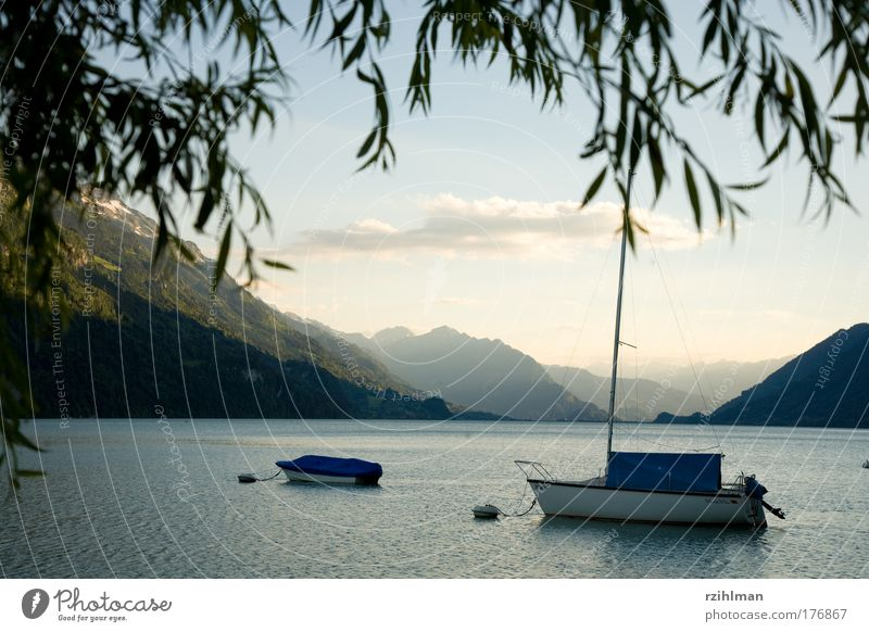 Boats on Lake Brienz Colour photo Exterior shot Copy Space top Evening Deep depth of field Panorama (View) Nature Landscape Water Sky Alps Mountain Navigation