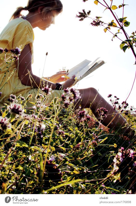 Human being Nature Youth (Young adults) Flower Woman Calm Meadow Grass Contentment Book Adults Reading Media Plant Serene Beautiful weather