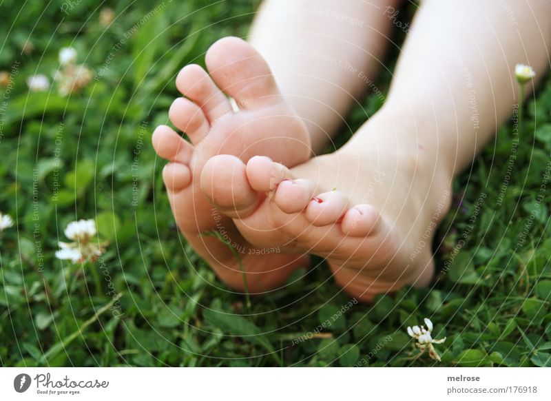 feel ... Well-being Senses Relaxation Freedom Summer Child Girl Feet Nature Earth Touch Lie Dream Happy Natural Emotions Contentment Warm-heartedness
