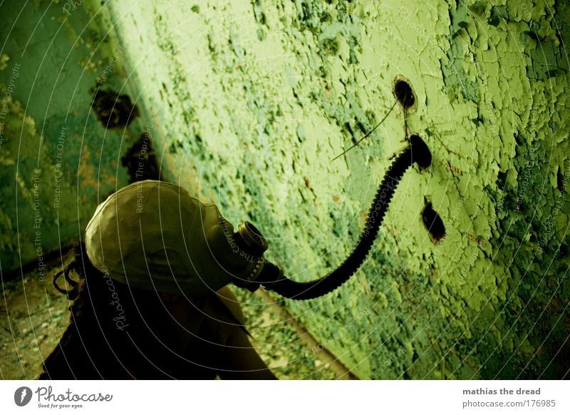 A WALL SNIFFER Colour photo Interior shot Day Twilight Shadow Contrast Silhouette Sunlight Deep depth of field Bird's-eye view Upper body Looking away Masculine
