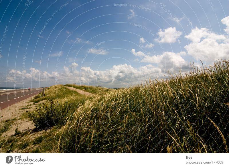 Nature Sky Sun Ocean Plant Summer Clouds Street Emotions Lanes & trails Landscape Moody Coast Grief Bushes Hill