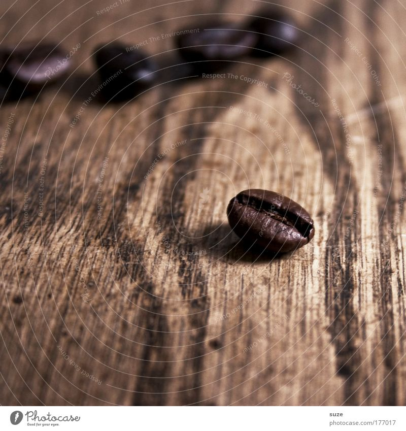 Zack, the bean Food To have a coffee Coffee Latte macchiato Espresso Wood Esthetic Simple Natural Dry Brown Coffee bean Wood grain Still Life Aromatic