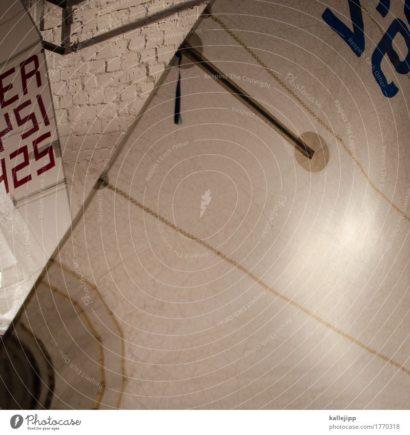optimist Navigation Sailing ship White Bright sail number Regatta Optimist canvas sail batten Colour photo Interior shot Light Shadow Contrast