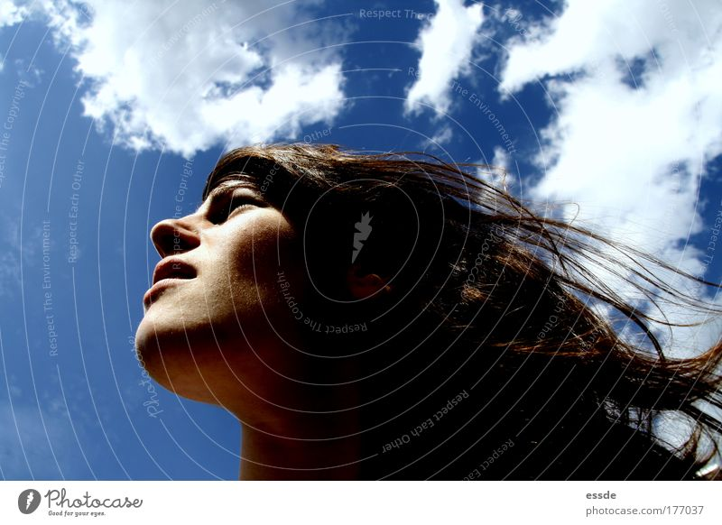 Human being Youth (Young adults) Blue Sun Summer Clouds Face Feminine Freedom Head Movement Hair and hairstyles Dream Adults Brown