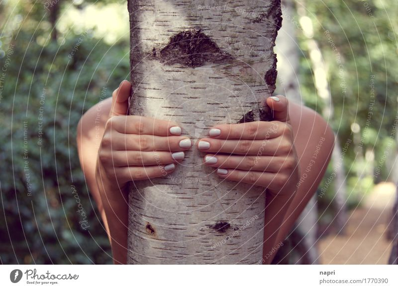Come on, let's go to the birch forest... Feminine Young woman Youth (Young adults) Hand Fingernail 1 Human being 13 - 18 years 18 - 30 years Adults Tree