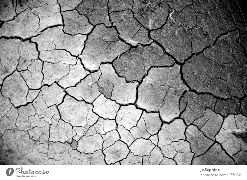 Nature Environment Warmth Earth Climate Broken Gloomy Ground Threat Dry Hot Crack & Rip & Tear Shriveled Climate change Thirst Crisis
