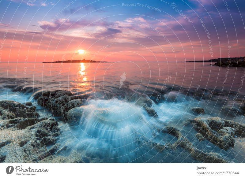 Stay a little longer Summer Ocean Landscape Water Sky Sunrise Sunset Beautiful weather Blue Orange Romance Calm Wanderlust Horizon Idyll Far-off places