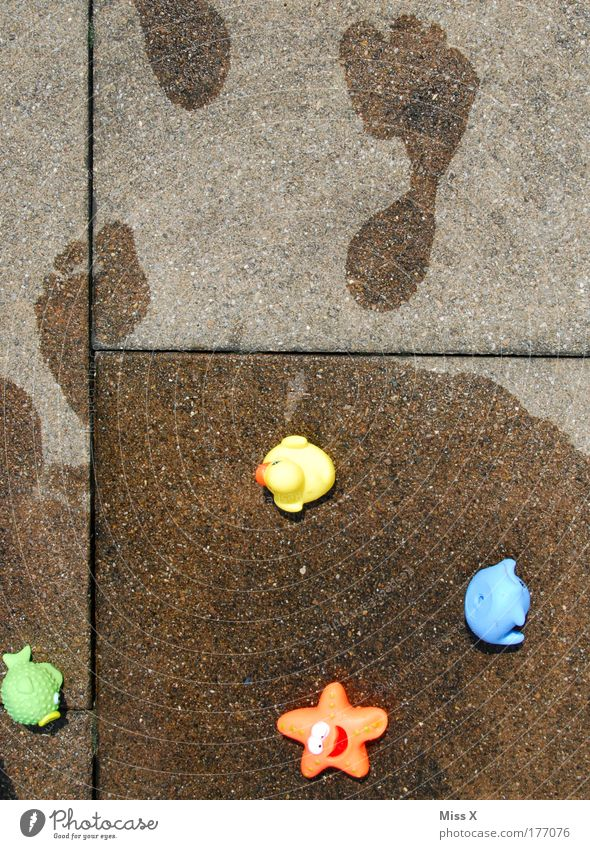 Water Sun Summer Joy Playing Feet Going Wet Fresh Happiness Swimming pool Swimming & Bathing Toys Infancy