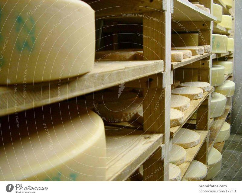 cheese cellar Cheese Healthy Delicious Allgäu cheese store Food Milk farmer's cadastre Colour photo Interior shot Day Artificial light