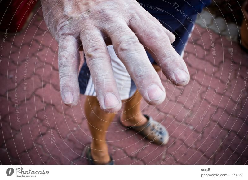 Human being Man Old Hand White Adults Work and employment Power Dirty Masculine Fingers Construction site Industry Cleaning Painting (action, work) Strong