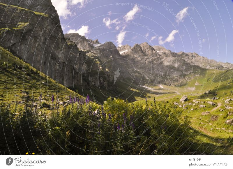 Swiss Alps Colour photo Exterior shot Day Deep depth of field Wide angle Tourism Summer Summer vacation Mountain Nature Landscape Beautiful weather Peak