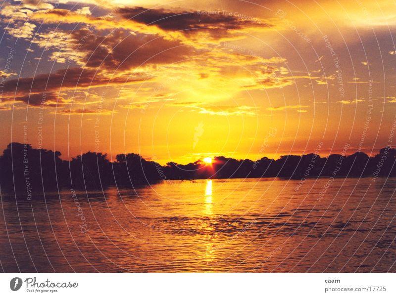 Apure Sunset Venezuela South America River Water