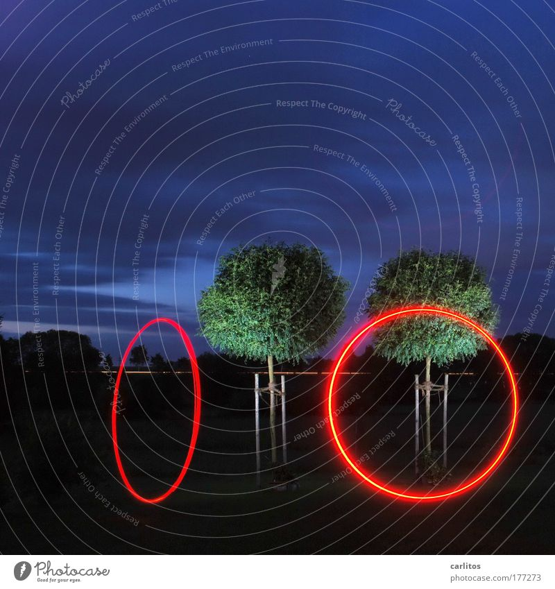 ring, ring Experimental Night Light (Natural Phenomenon) Long exposure Wide angle Relaxation Calm Art Belly dance Tree Sign Ornament Sphere Movement Rotate