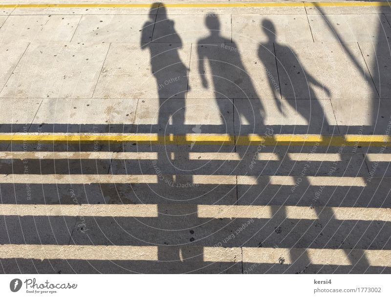 standing and walking shadows Woman Adults Friendship 3 Human being Beautiful weather Pedestrian Stone Concrete Line Stripe Running Observe Movement Going
