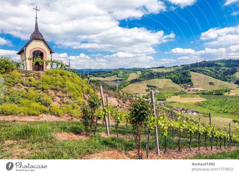 Marien chapel in the vineyard near Oberkirch, Ortenau, Black Forest Wine Vacation & Travel Tourism Trip Cycling tour Hiking Landscape Vine Vineyard Field