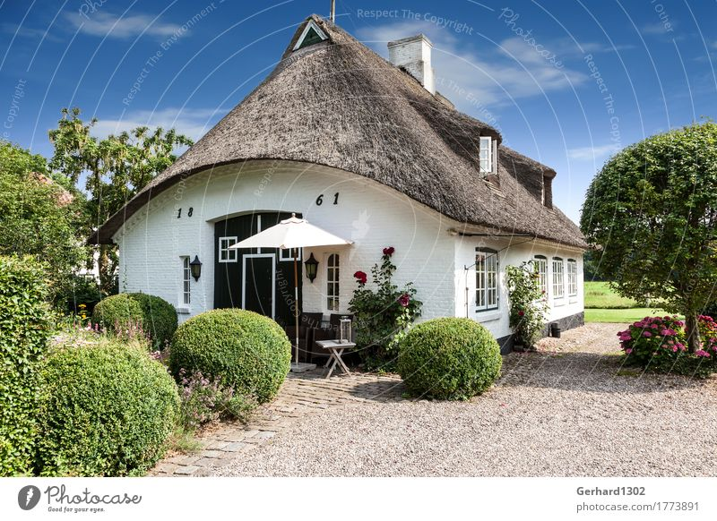 Reed house in Sieseby an der Schlei Vacation & Travel Tourism Trip Sightseeing Cycling tour Hiking Nature Beautiful weather Coast Baltic Sea Fishing village