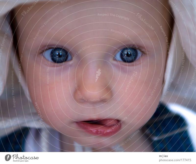 Child Beautiful Girl Summer Life Boy (child) Head Happy Think Dream Infancy Baby Glittering Observe Curiosity Trust